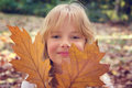 Free Girl With Autumn Leaves Stock Photography - 35687872