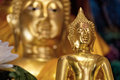 Free Golden Little Buddha Royalty Free Stock Photos - 35692288