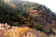 Free Laoshan Mountains Beautiful Autumn Scenery Of Chin Stock Image - 35699851