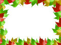 Free Autumn Leaves Frame Royalty Free Stock Photography - 3570327