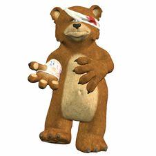 Hurt Bear Royalty Free Stock Images