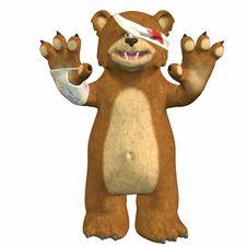 Hurt Bear Royalty Free Stock Photography