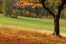 Free Warm Autumn Day Stock Image - 3570371