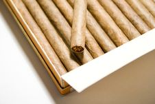 Free Cigar Stock Photo - 3570470