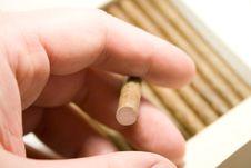 Free Cigar Royalty Free Stock Image - 3570476
