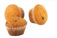 Muffins On White Royalty Free Stock Photography