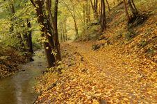 Free Autumn Path With Stream Royalty Free Stock Image - 3570796