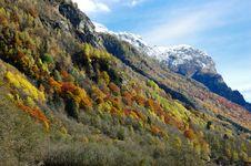Free Mountain Autumn Scenic Stock Photography - 3571422