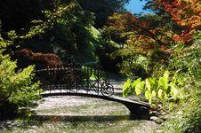 Free Garden Lake Stock Photos - 3571513