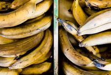 Free Rotten Bananas Royalty Free Stock Photo - 3572915