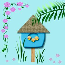 Baby Birds Birdhouse Royalty Free Stock Images