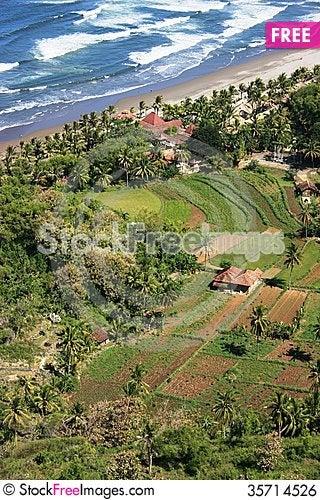 Free Parangtritis Beautiful Beaches Royalty Free Stock Image - 35714526