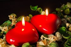 Free Couple Of Red Candles Among The Dried Flowers Stock Image - 35720041