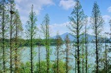 Free Xuanwu Lake Royalty Free Stock Photo - 35720105