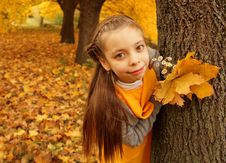 Beautiful Girl Playing In Nature Royalty Free Stock Image