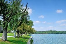 Free Xuanwu Lake Royalty Free Stock Image - 35723346