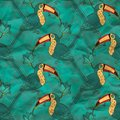 Free Vector Seamless Pattern With Toucan Royalty Free Stock Image - 35759136