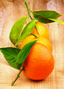 Free Tangerines Stock Images - 35770754