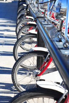 Bicycle Rent Stock Images