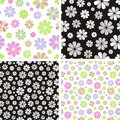 Free Flower Pattern Stock Photo - 35786020