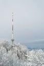 Free Uetliberg Tv-tower In Zurich Stock Photo - 35787400