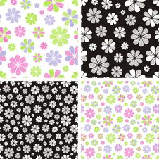 Free Flower Pattern Stock Photo - 35786020