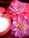 Free Cream And Towel With Flowers Royalty Free Stock Image - 3582506