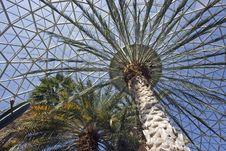 Free Botanic Gardens Stock Photography - 3580212