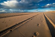 Free Tracks And Footsteps Stock Photos - 3582123