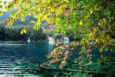 Free Autumn S Scene Stock Images - 3583454