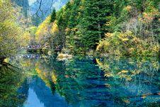Autumn S Scene Stock Images