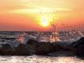 Free Breaking Waves Royalty Free Stock Photos - 35800858