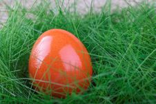 Orange Easter Egg On Green Grass Stock Photography