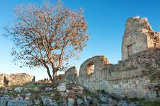 The Ruins Of The Ancient City Of In Chersonese Stock Images