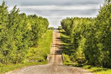 Free Landscape Of A Gravel Road Between A Forest Of Trees Royalty Free Stock Photos - 35827828
