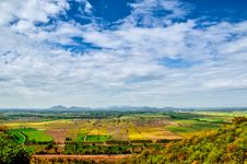 Beautiful View Of A Paddy Rice Fields Royalty Free Stock Image