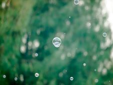 Free Soap Bubbles Stock Photography - 35839562