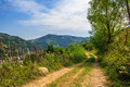 Free Mountain Road Near The Forest With Cloudy Sky Royalty Free Stock Images - 35843459