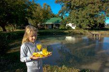 Free Organic Lifestyle Stock Image - 35846701