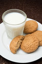 Free Glass Of Milk And Oat Cookies On A Plate Stock Image - 35856381