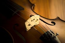 Free Time To Practice Violin Stock Photography - 35853262