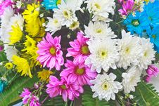 Free Beautiful Bouquet Of Bright Flowers Royalty Free Stock Photo - 35857075