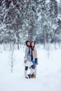 Free Fashion Women In Warm Sweaters On White Snow Forest Background Royalty Free Stock Image - 35865716