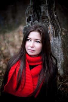 Free Portrait Of Woman In Red Scarf With Long Brunette Hair In Cold Dark Forest Royalty Free Stock Images - 35865519