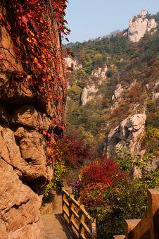 Free Laoshan Mountains Beautiful Autumn Scenery Of China Stock Images - 35869744