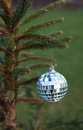 Free Mirror Ball Hanging On A Christmas Tree Branch Stock Photography - 35870242