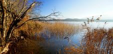 Free Bavarian Lake Royalty Free Stock Images - 35873779