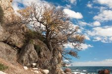 Crimean Peninsula, Ukraine, Black Sea Coast Royalty Free Stock Images