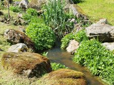 Free Still Life In The Creek , South Bohemia Royalty Free Stock Images - 35876919