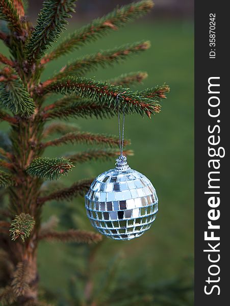 Mirror ball hanging on a Christmas tree branch